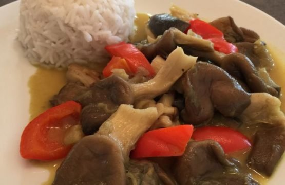 Pilz-Rezept: Austernpilze mit Reis