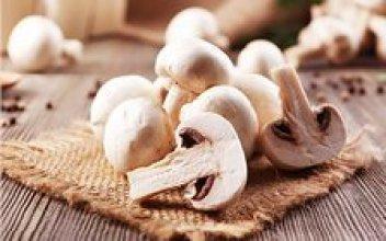 Champignons Gesunde Pilze